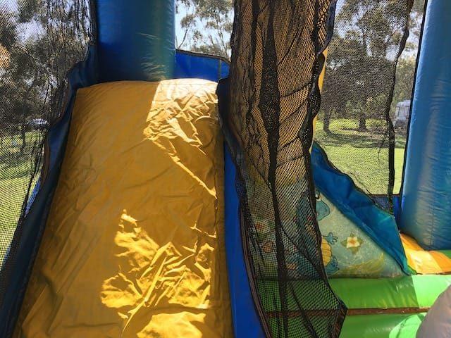Dinosaur kingdom slide view